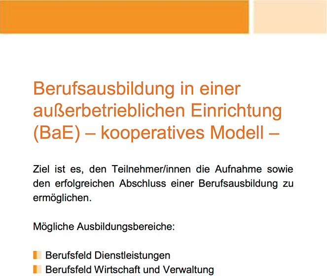 Flyer BaE-kooperatives Modell